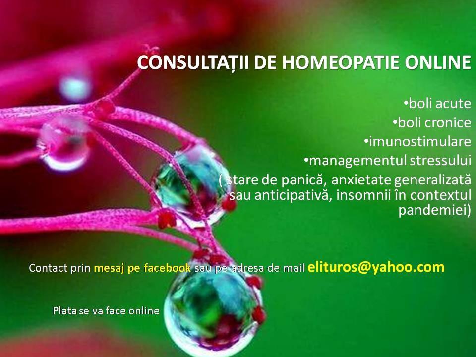 consultatii-homeopatie-online satu mare